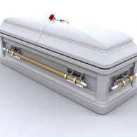 This matte finish silver casket combines the security of metal with the natural allure of wood.