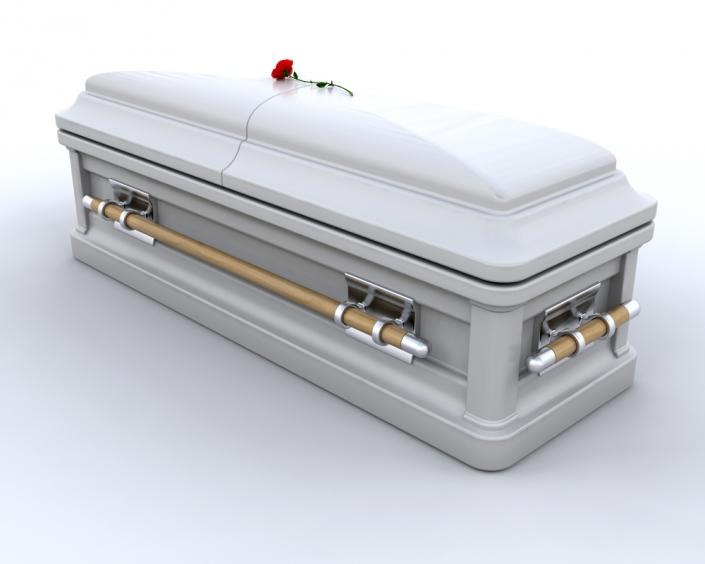 [Image: This matte finish silver casket combines the security of metal with the natural allure of wood.]